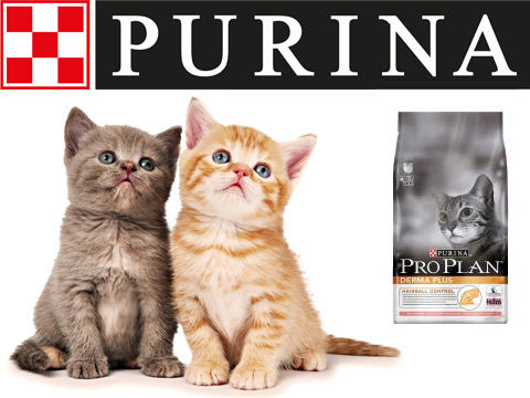 Purina cat food branding